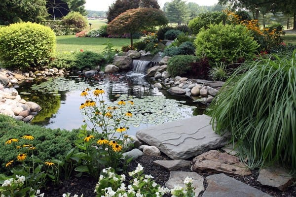 Ideas For Fish Ponds