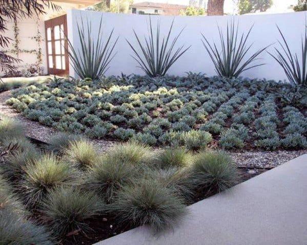 Ideas For Home Desert Landscaping