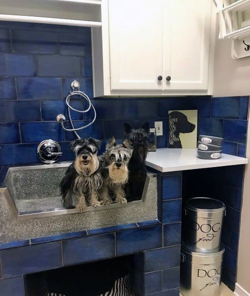 Ideas For Home Dog Wash Stations