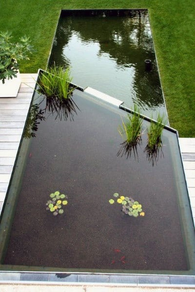 Ideas For Ponds In The Garden