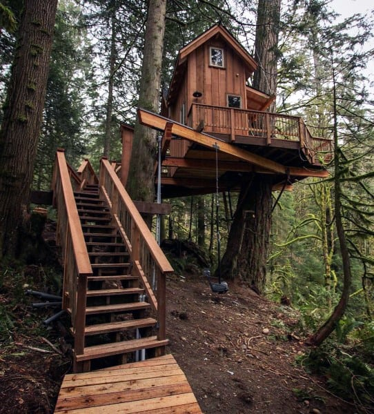Ideas For Tree Houses