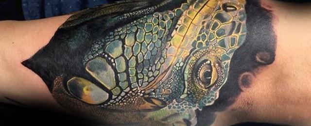 Iguana Tattoo Designs For Men