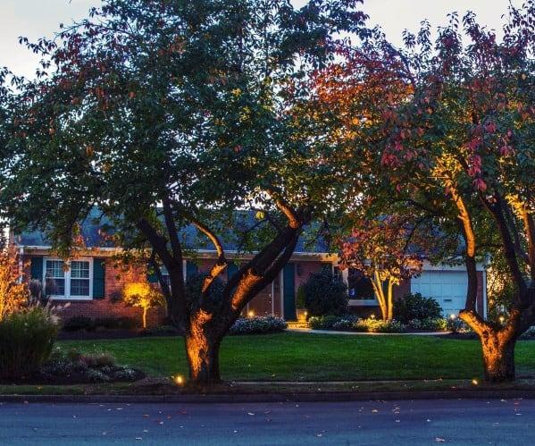 Top 70 best landscape lighting ideas front and backyard illumination impressive landscape lighting ideas front yard aloadofball Images