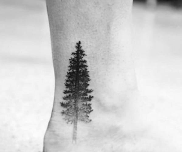 Incredible Ankle Shaded Pine Tree Tattoos For Men