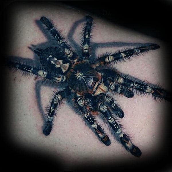 Incredible Detailed Tarantula Spider Tattoos For Males