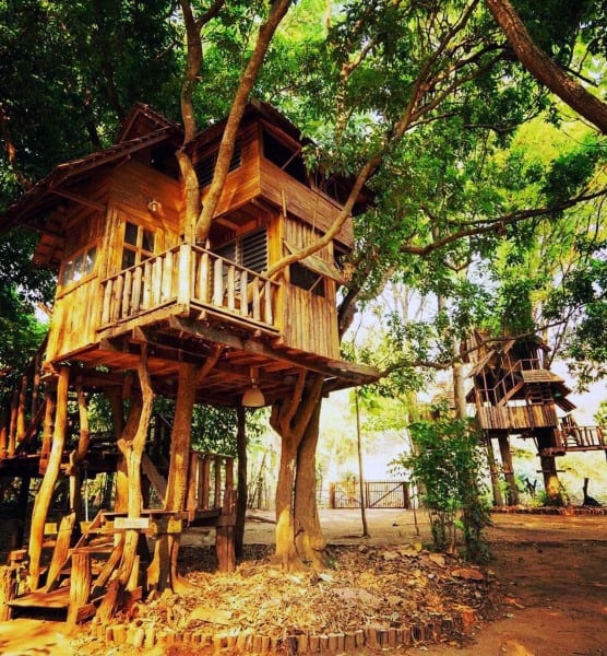 Incredible Large Treehouse Ideas