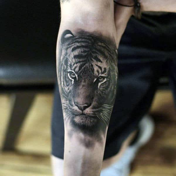 Incredible Mens Animal Tiger Tattoo On Inner Forearm