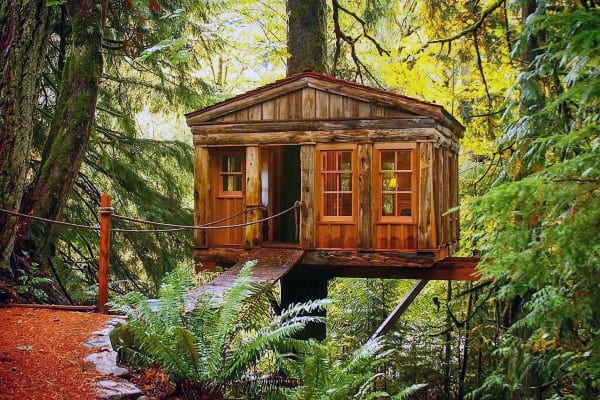 Incredible Treehouse Ideas