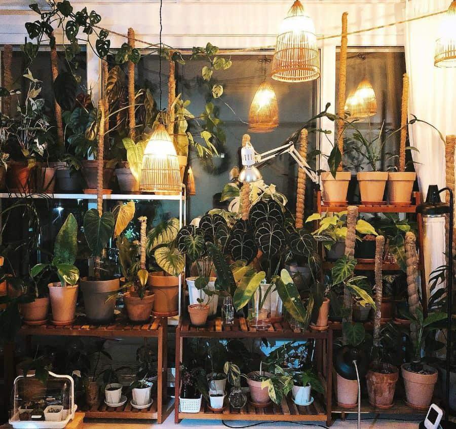 indoor container garden ideas bigtiger