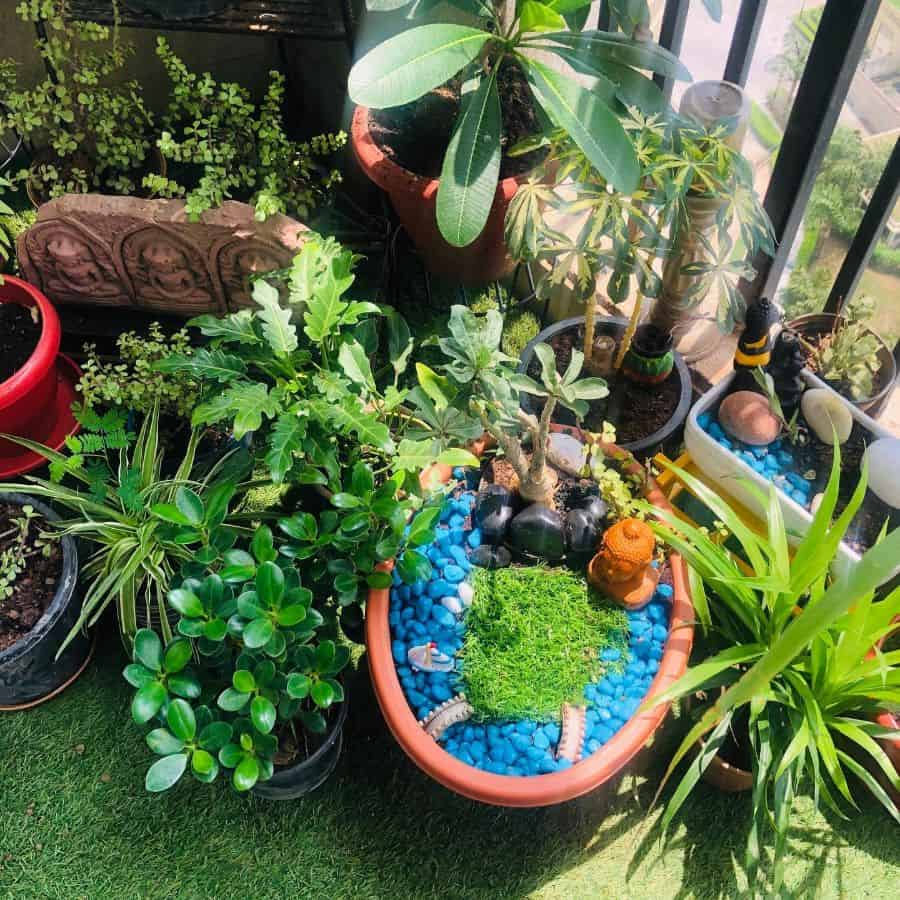 indoor zen garden ideas rakhisameer