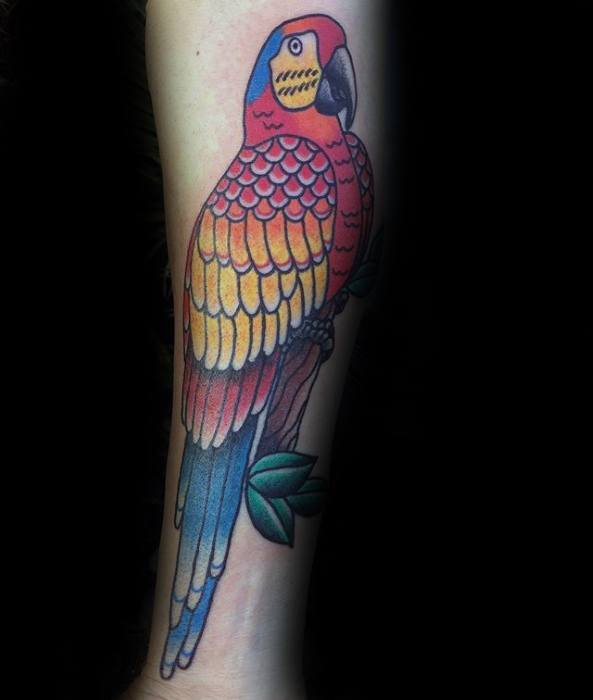 Inenr Forearm Male Cool Parrot Tattoo Ideas