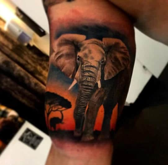 Inner Arm Bicep Quarter Sleeve Male Africa Elephant Tattoo