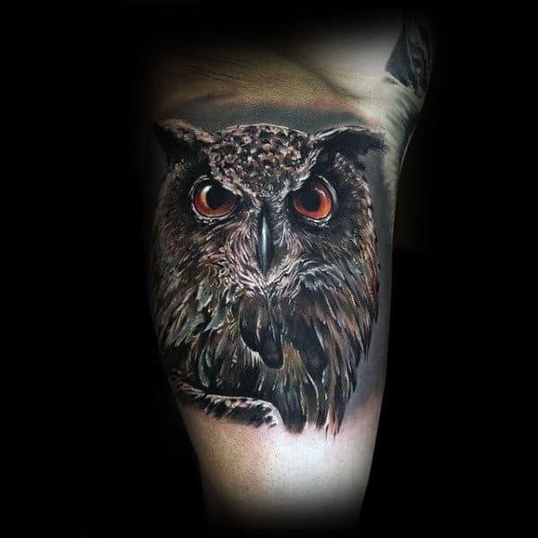 Inner Arm Bicep Realistic Male Owl Tattoo Ideas