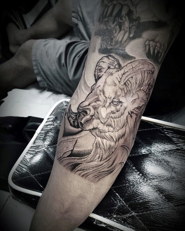 Inner Arm Ram Tattoo On Male