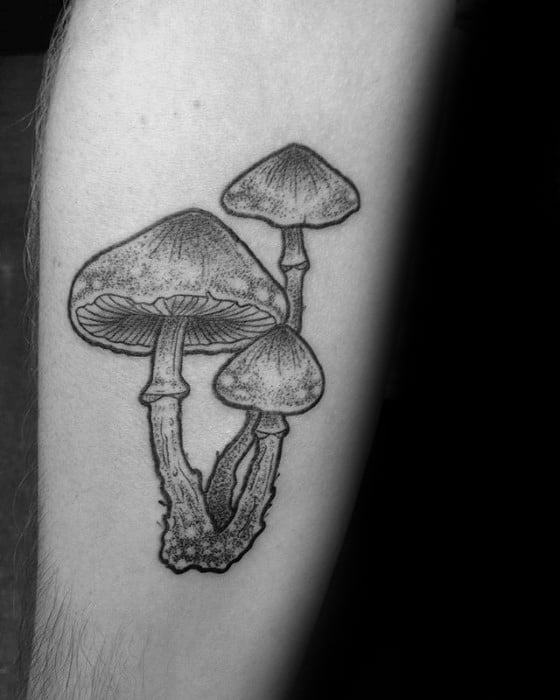Inner Forearm Detailed Mushroom Mens Tattoo Designs