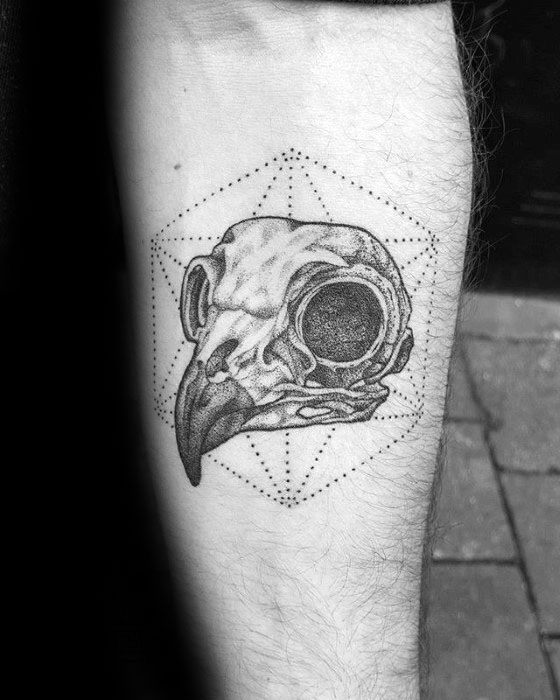 Inner Forearm Mens Owl Skull Tattoo Ideas