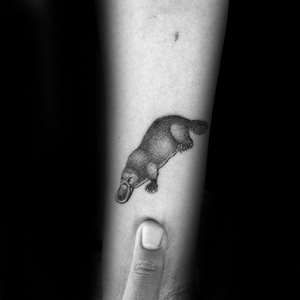 Inner Forearm Small Simple Guys Platypus Tattoos