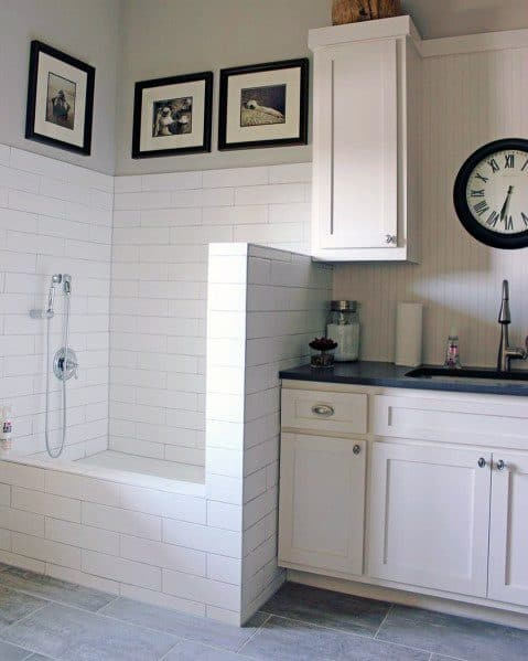 Interior Ideas For Home Dog Wash Stations