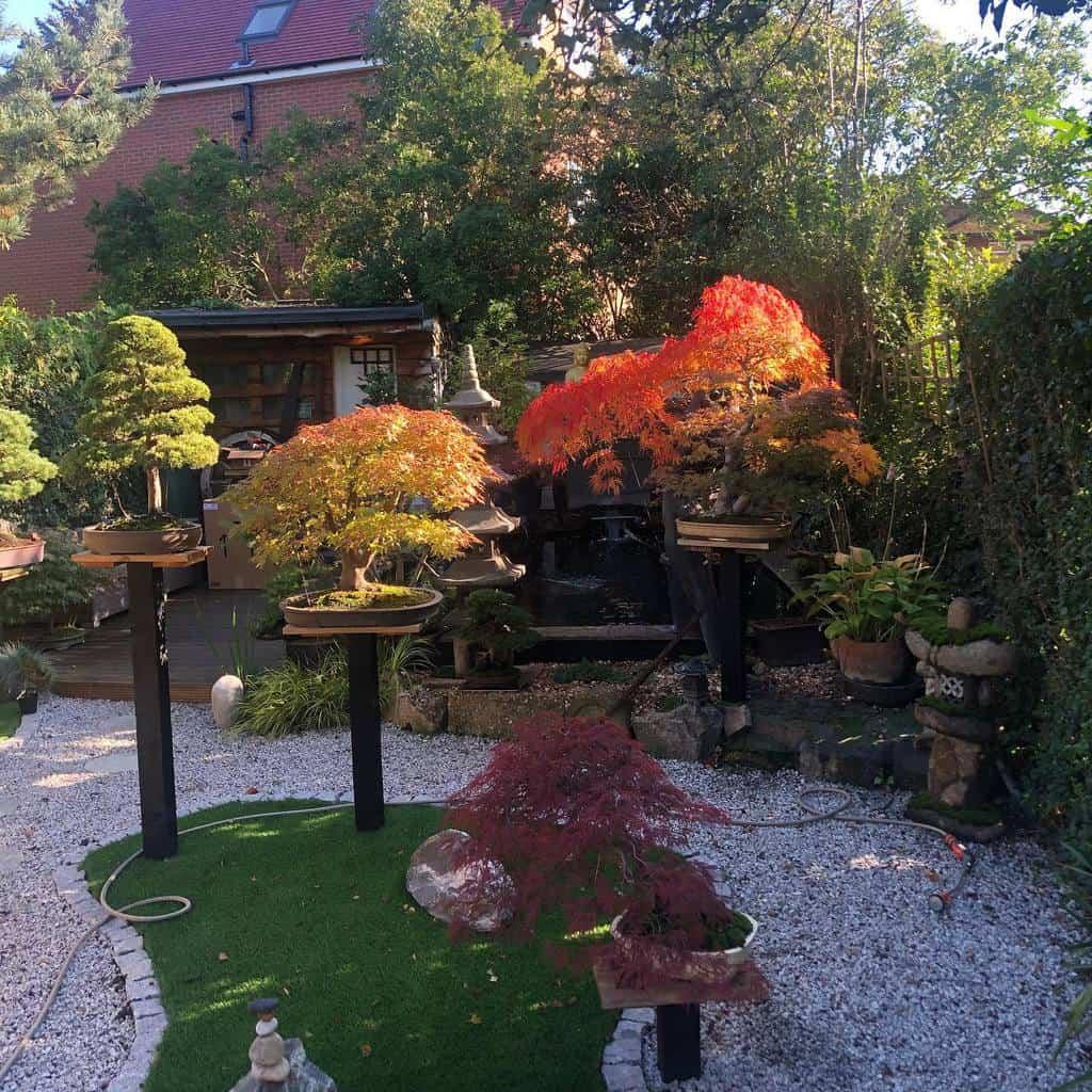 japanese garden shade garden ideas bonsaibible