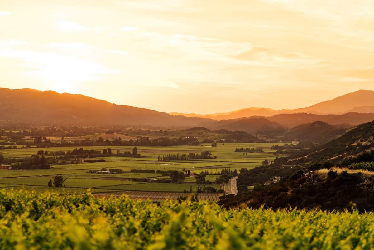 joseph-phelps-winery
