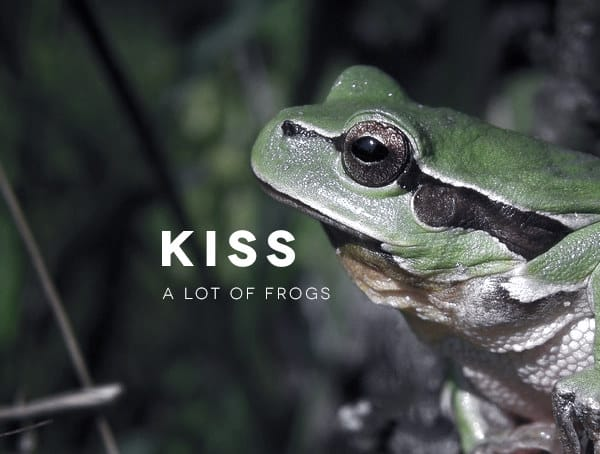 Kiss A Lot Of Frogs As A Business Man