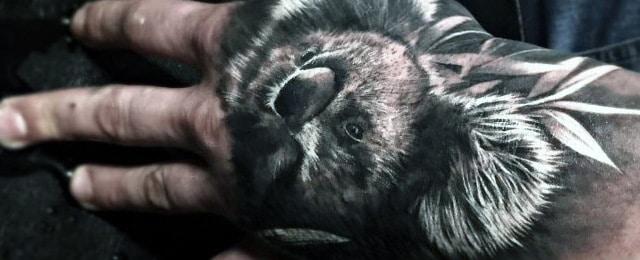 Koala Tattoo Designs For Men