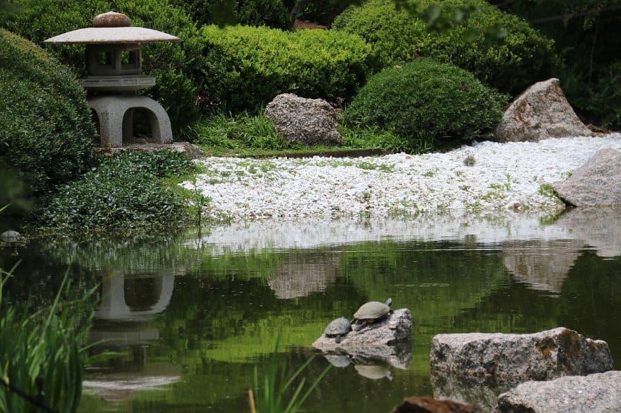 koi pond zen garden ideas 2