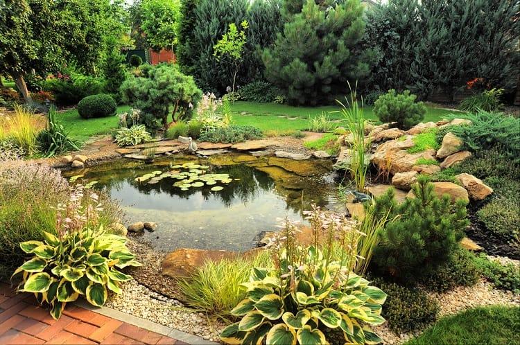 Landscape Design Backyard Small Shallow Pond