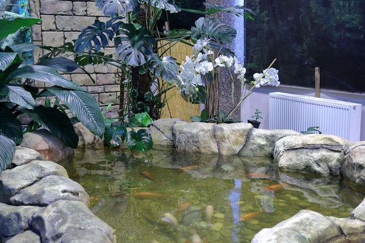Landscape Of Green Backyard Koi Pond