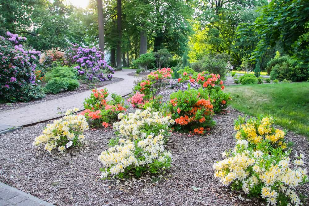 landscaped flower garden ideas 4
