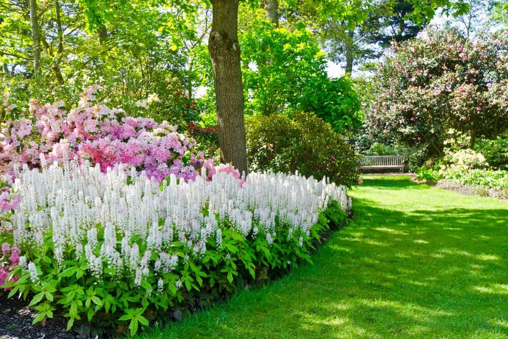 landscaped shade garden ideas 1