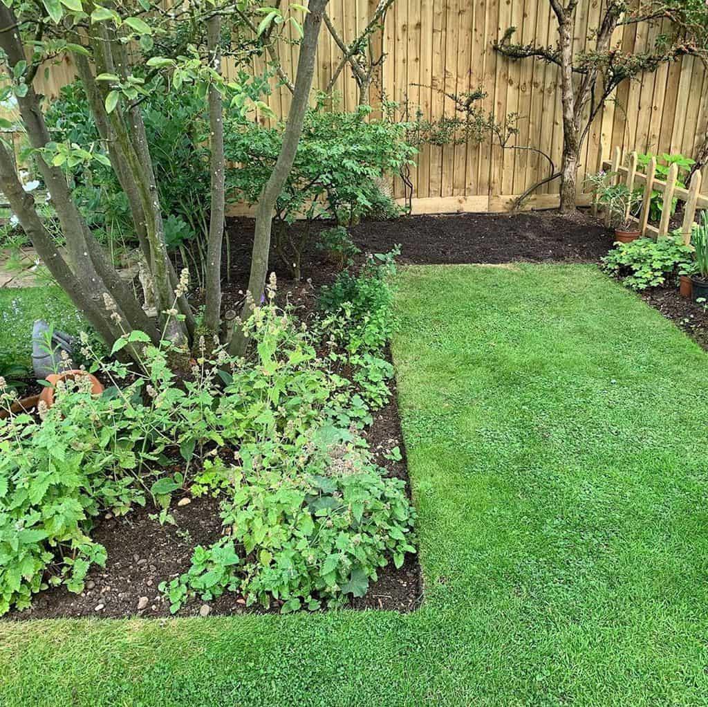 landscaped shade garden ideas anneguygardendesigns