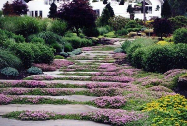 Landscaping Flowers Stone Walkway Ideas