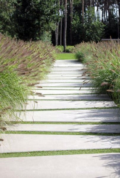 Landscaping Plants Stone Walkway Home Ideas