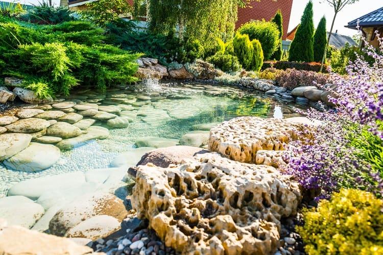 Lanscape Design Backyard Small Shallow Pond