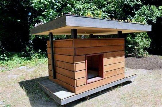 Large Dog House Ideas