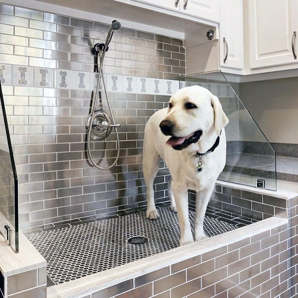 Large Dog Washing Station With Dog Bone Pattern Wall Tile