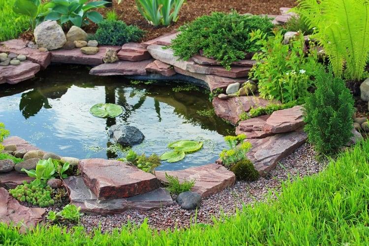 Large Stone Backyard Small Shallow Pond