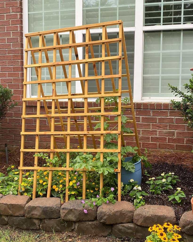 lattice garden trellis ideas albert_bebe_kitkat_neko_smudge