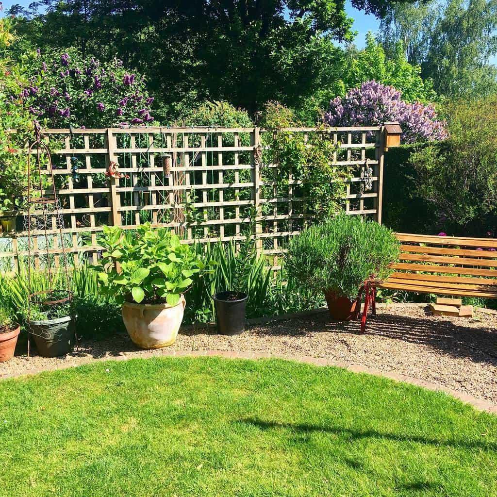 lattice garden trellis ideas thelittleblackandwhitecat