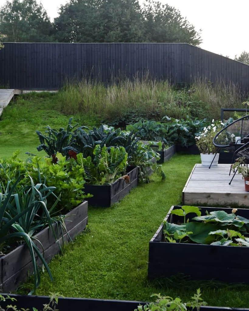 layout vegetable garden ideas stable_garden