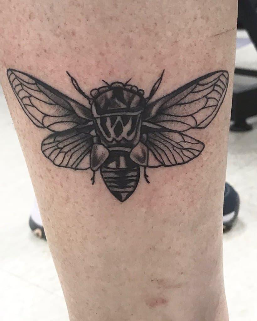 leg Cicada Tattoos dannyk551