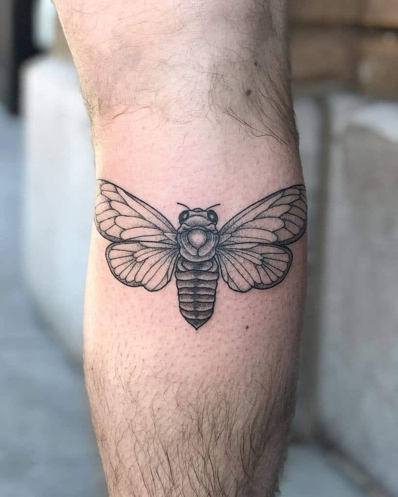 leg Cicada Tattoos dawn.tattoos
