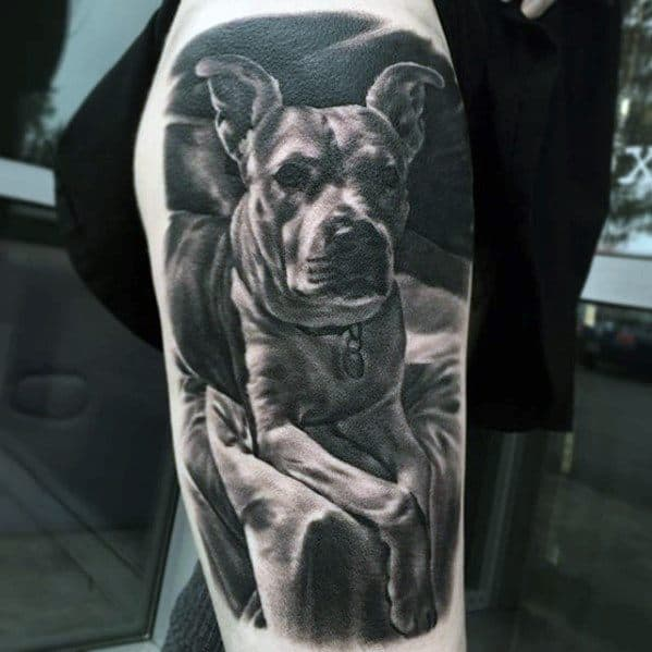 Leg Cool Pitbull Dog Tattoo Design Ideas For Male