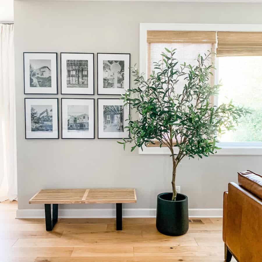 Living Room Interior Decorated With Plants Funhomebuilding