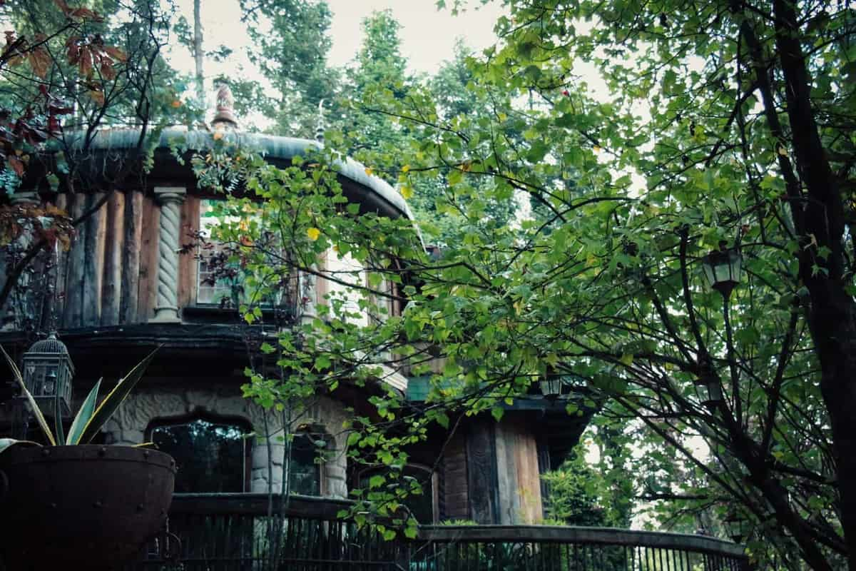 log-cabin-rentals-1