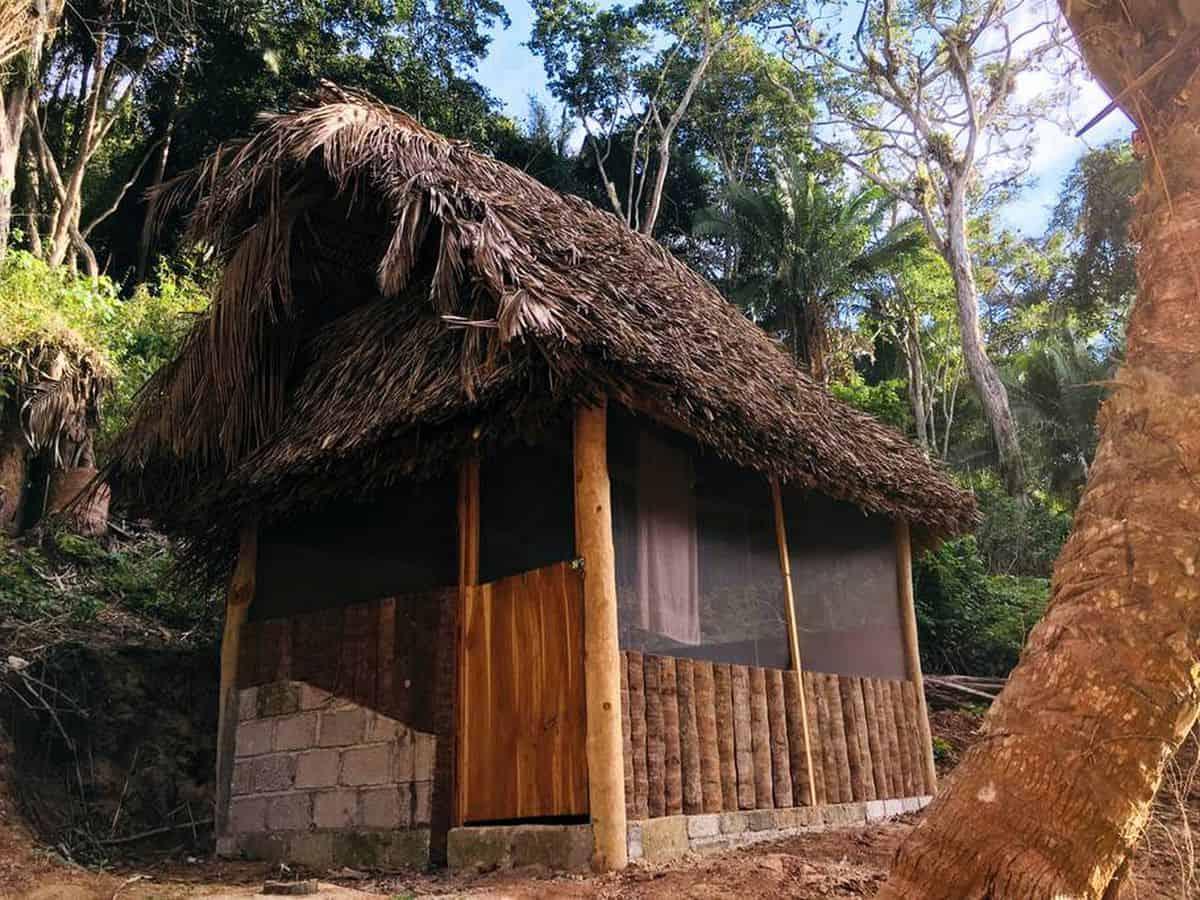 log-cabin-rentals-5