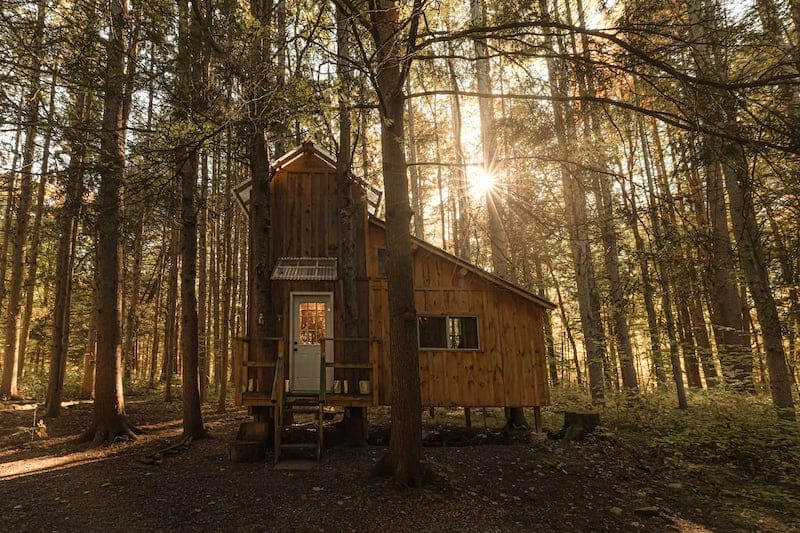 The 10 Best North American Log Cabin Rentals  To Experience In 2021