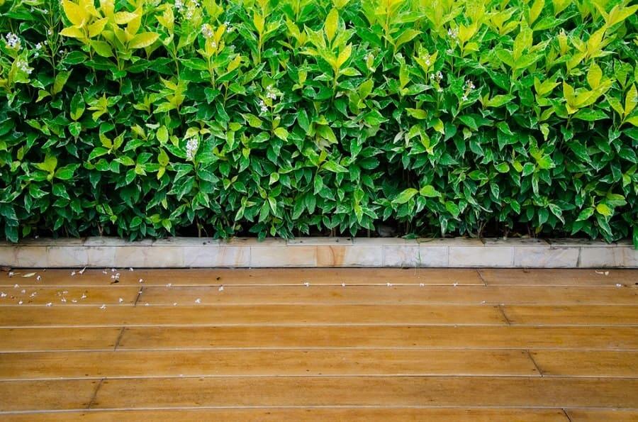 Logs Wooden Walkway Ideas