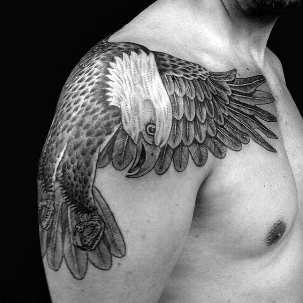 Lovely Winged Grey Bald Eagle Tattoo Guys Shoulders